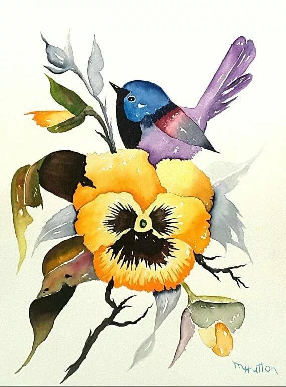 акварель птицы цветы картинки очень