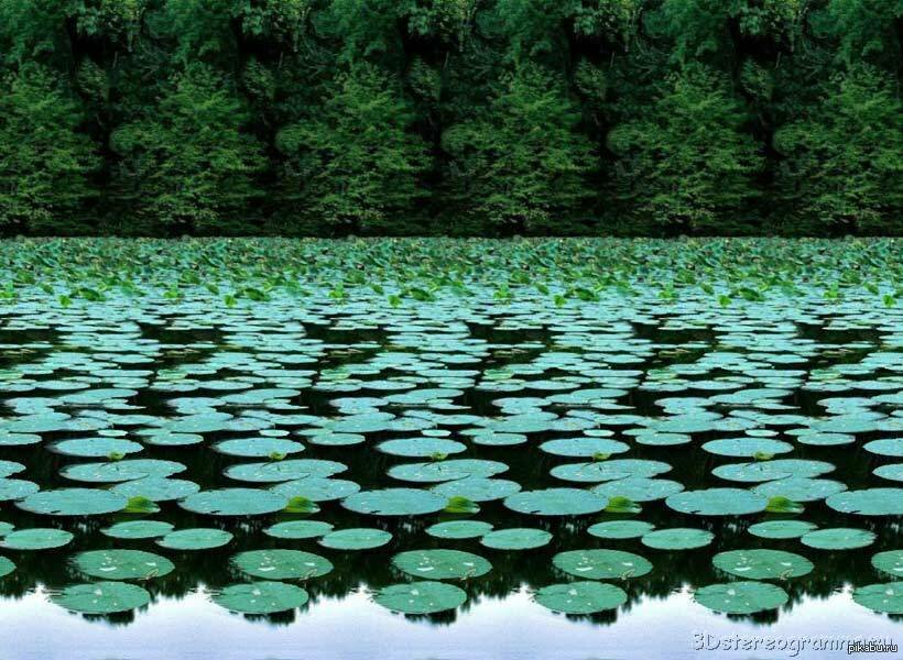 Природа стерео картинки