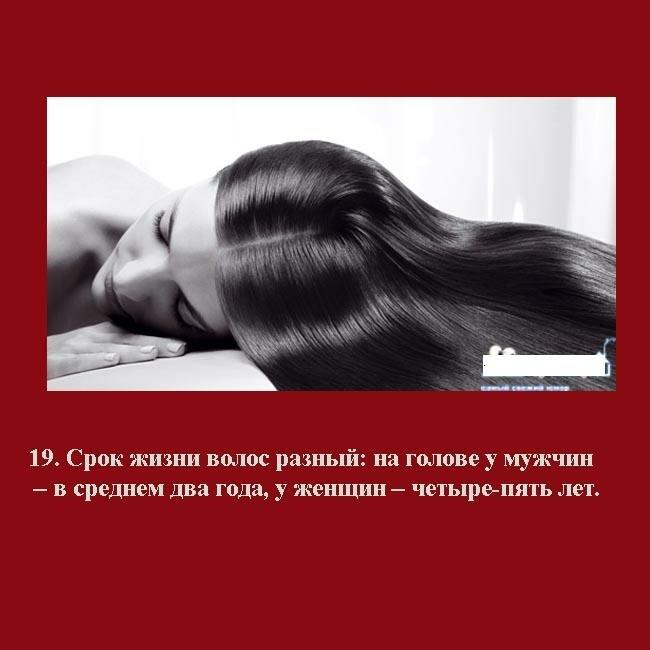 полезные картинки о волосах того