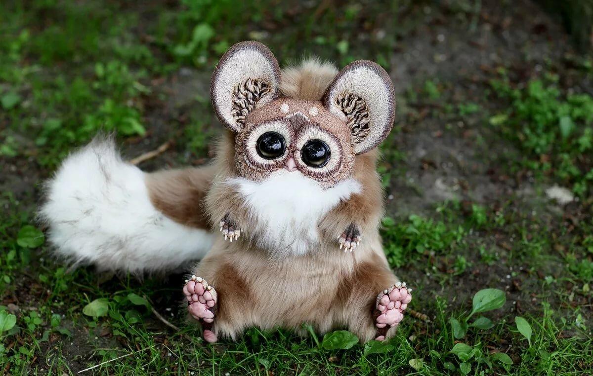Очень самые милые животные в мире фото