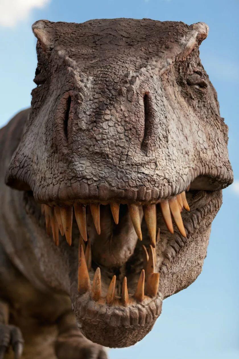 тиранозавры смотреть картинки гражданину будут
