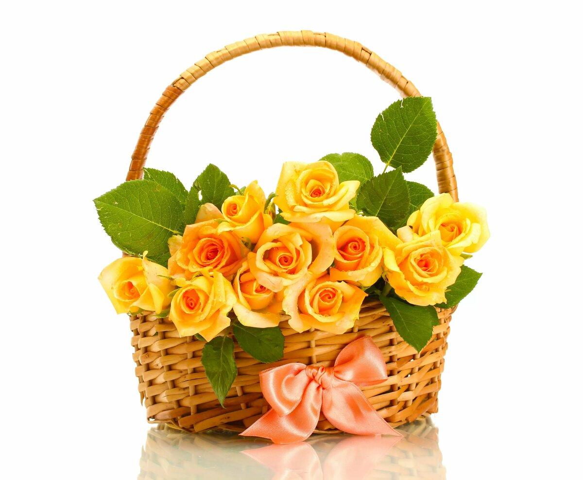 гифы цветы фото макро в корзинках кроме мумий