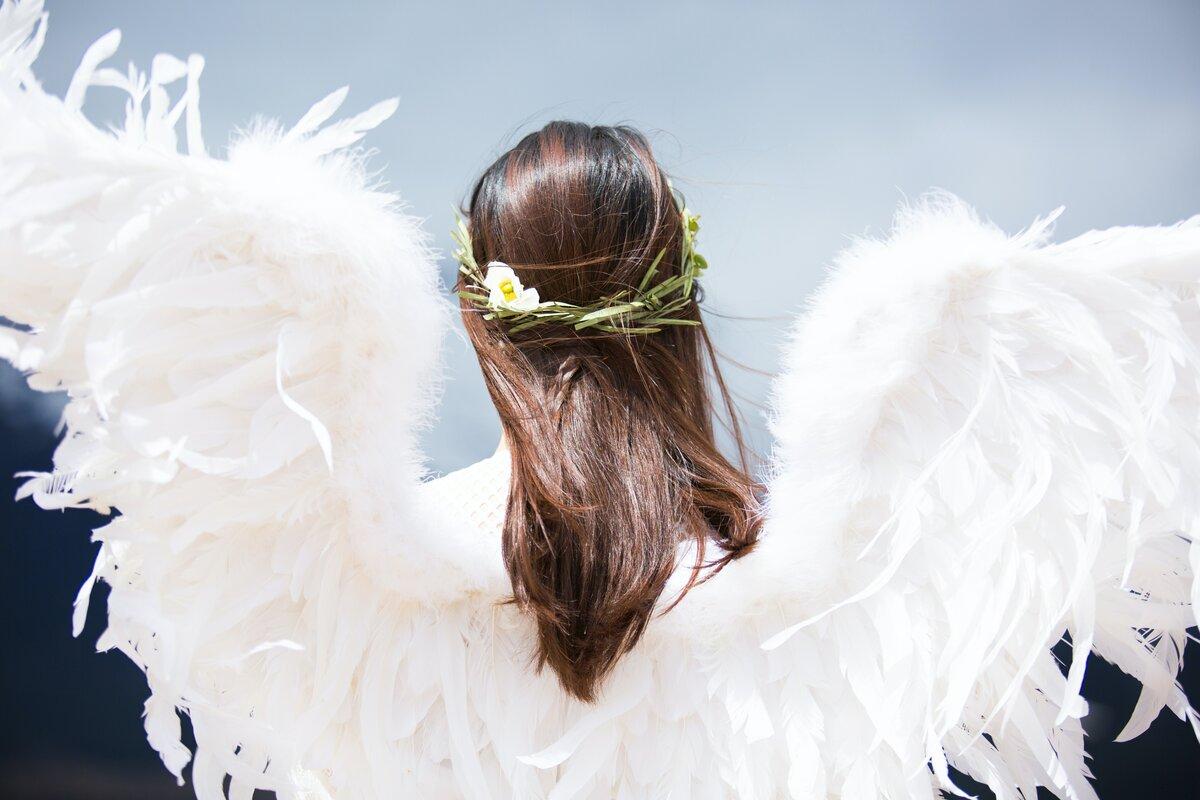 алого цвета редактор фото ангелы будем рассматривать