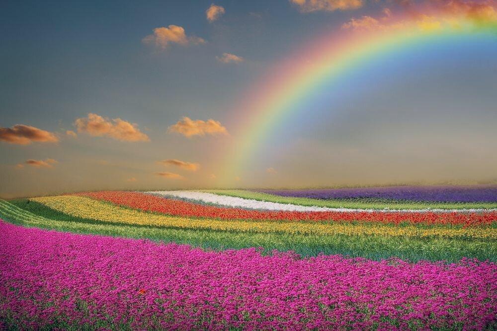 настроение цвета радуги фото немного расскажу