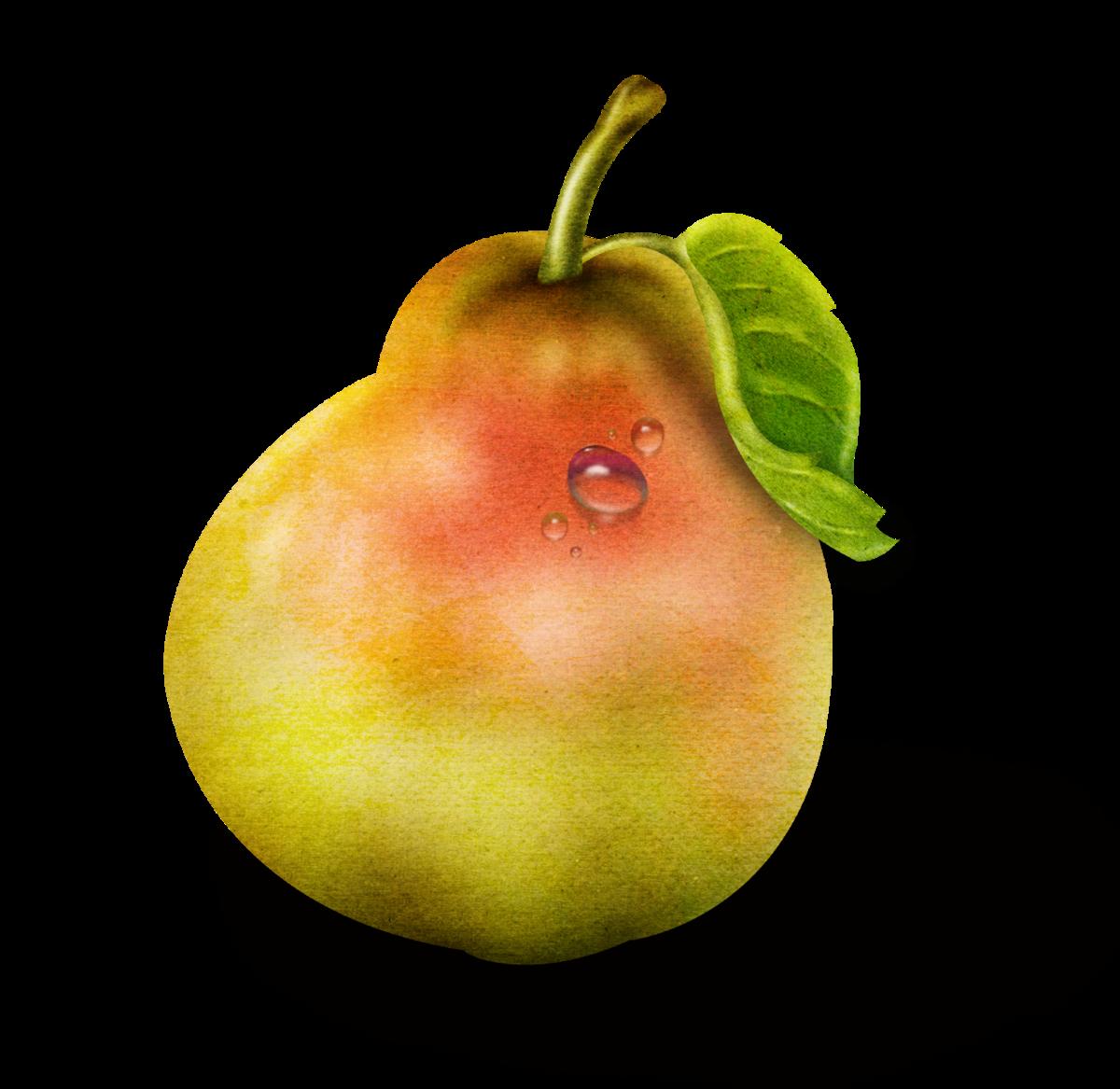 фрукты овощи картинки по одному