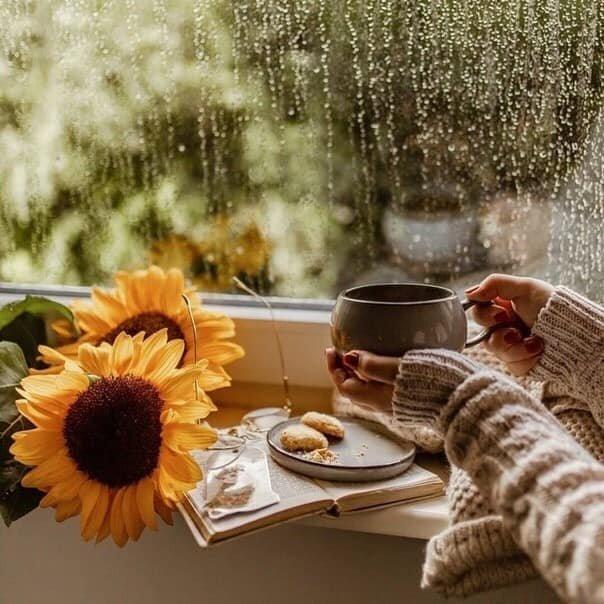 картинки с добрым утром чай дождь фдт