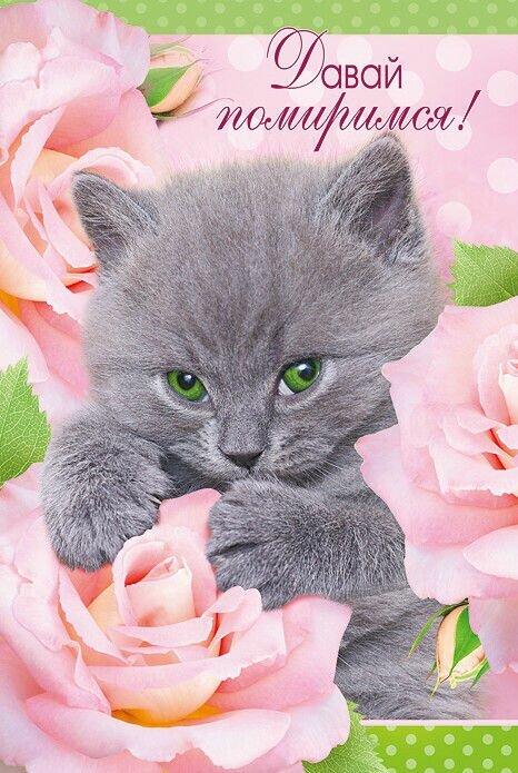 Открытка прости меня котенок