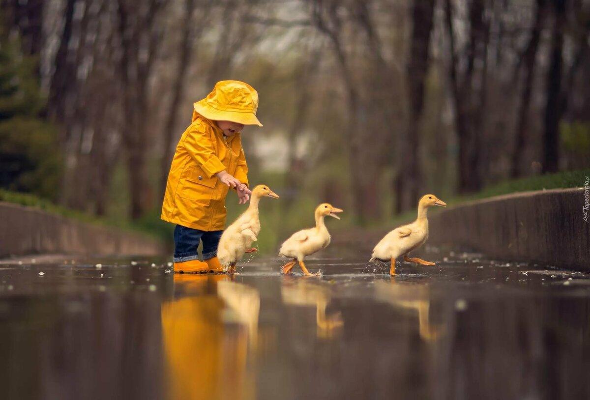 Картинка таня с утками