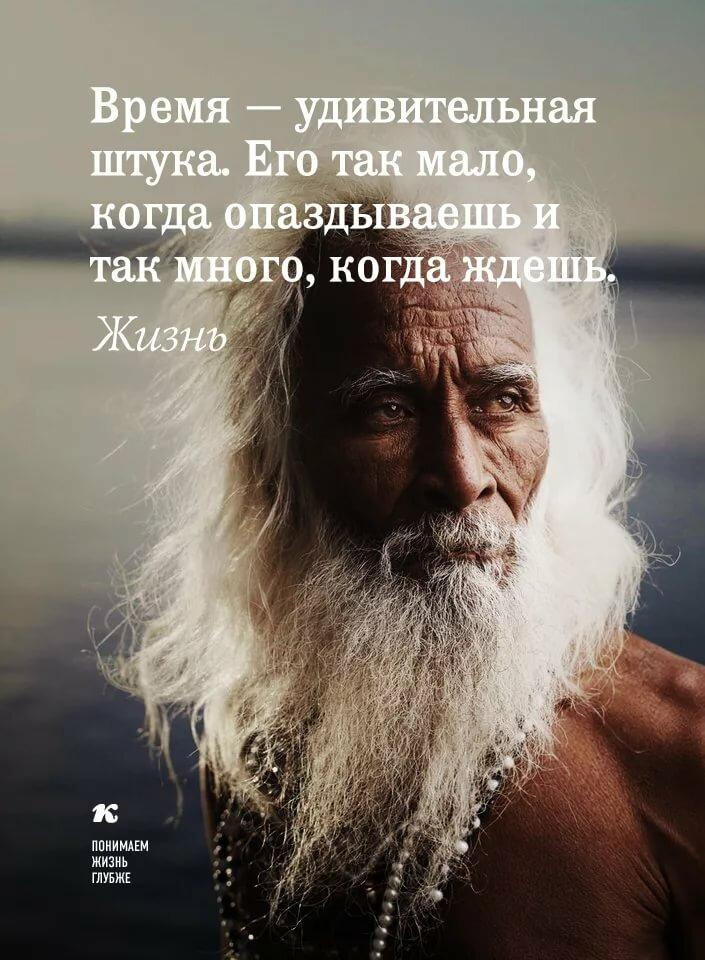 Остроумные цитаты картинки фразы афоризмы