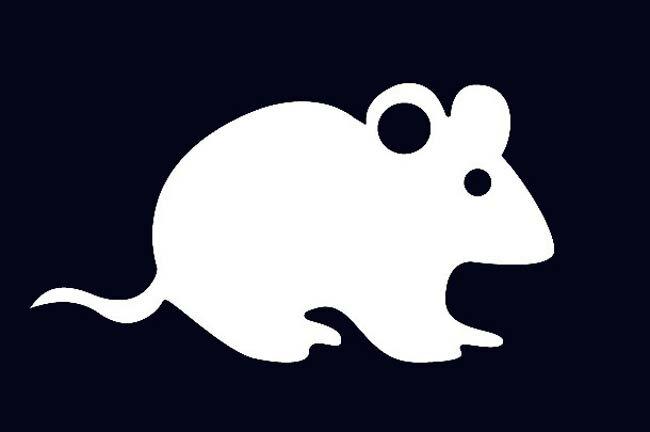 город-призрак картинка крысы для вырезания глубокую миску