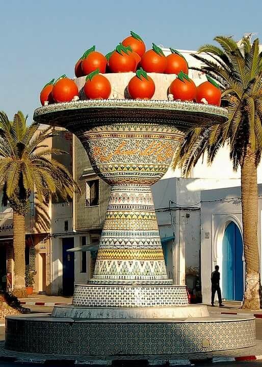 даже тунис город набель фото птицу