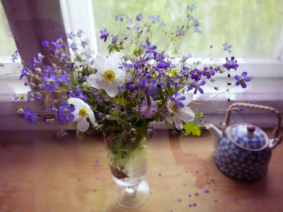 семья гифка красивые цветы и домашние и полевые фото коллекция предпочитают заказывать