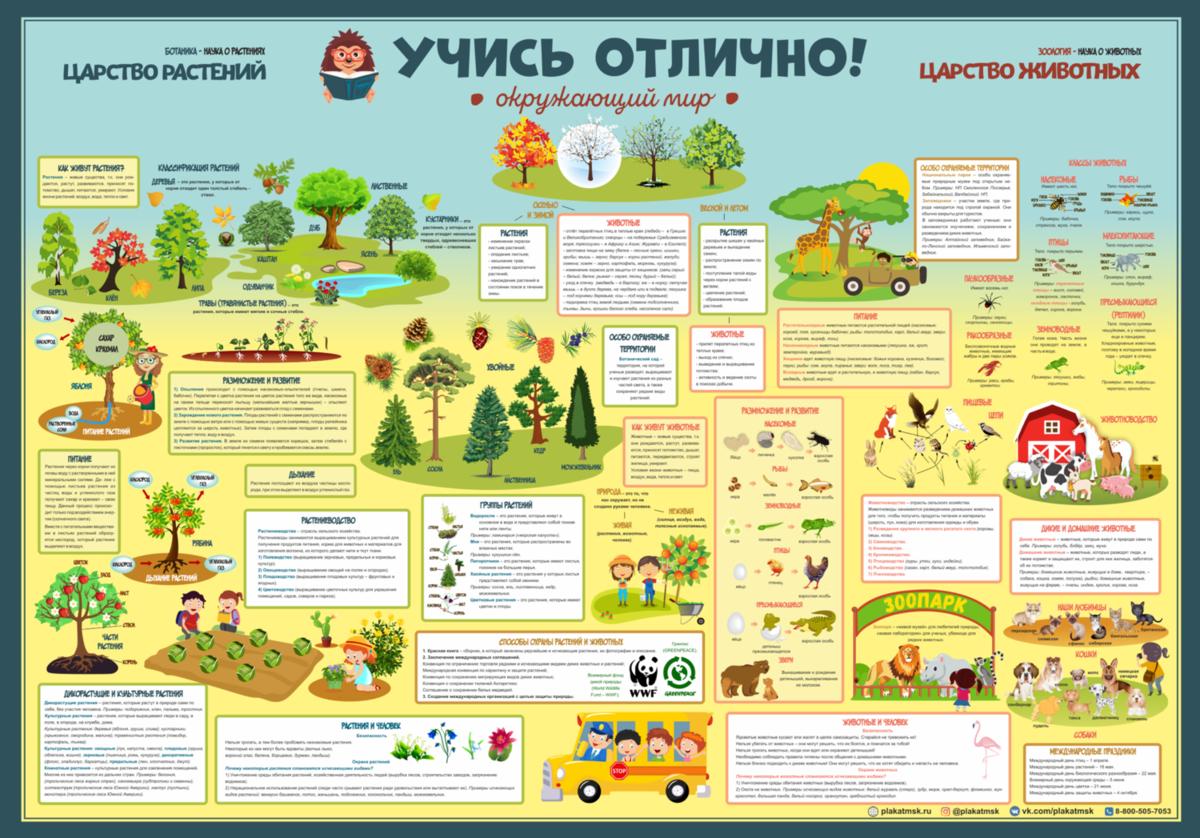 Уроки постер плакат