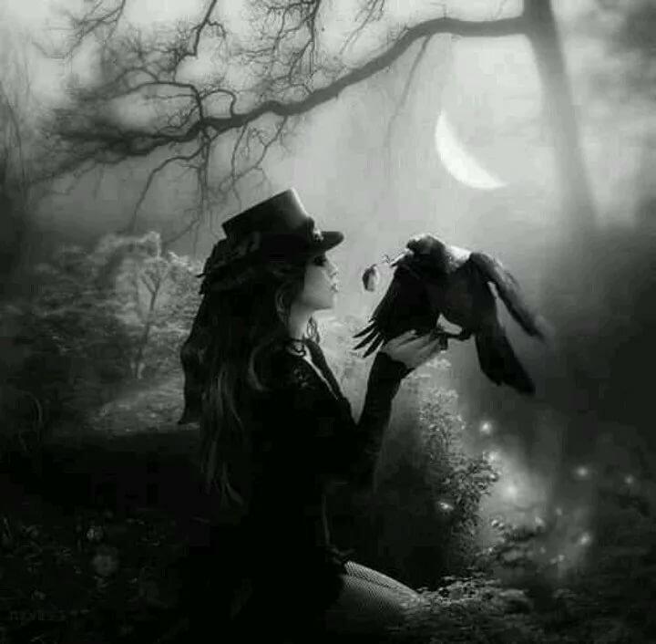Готическая картинка с вороном и девушкой