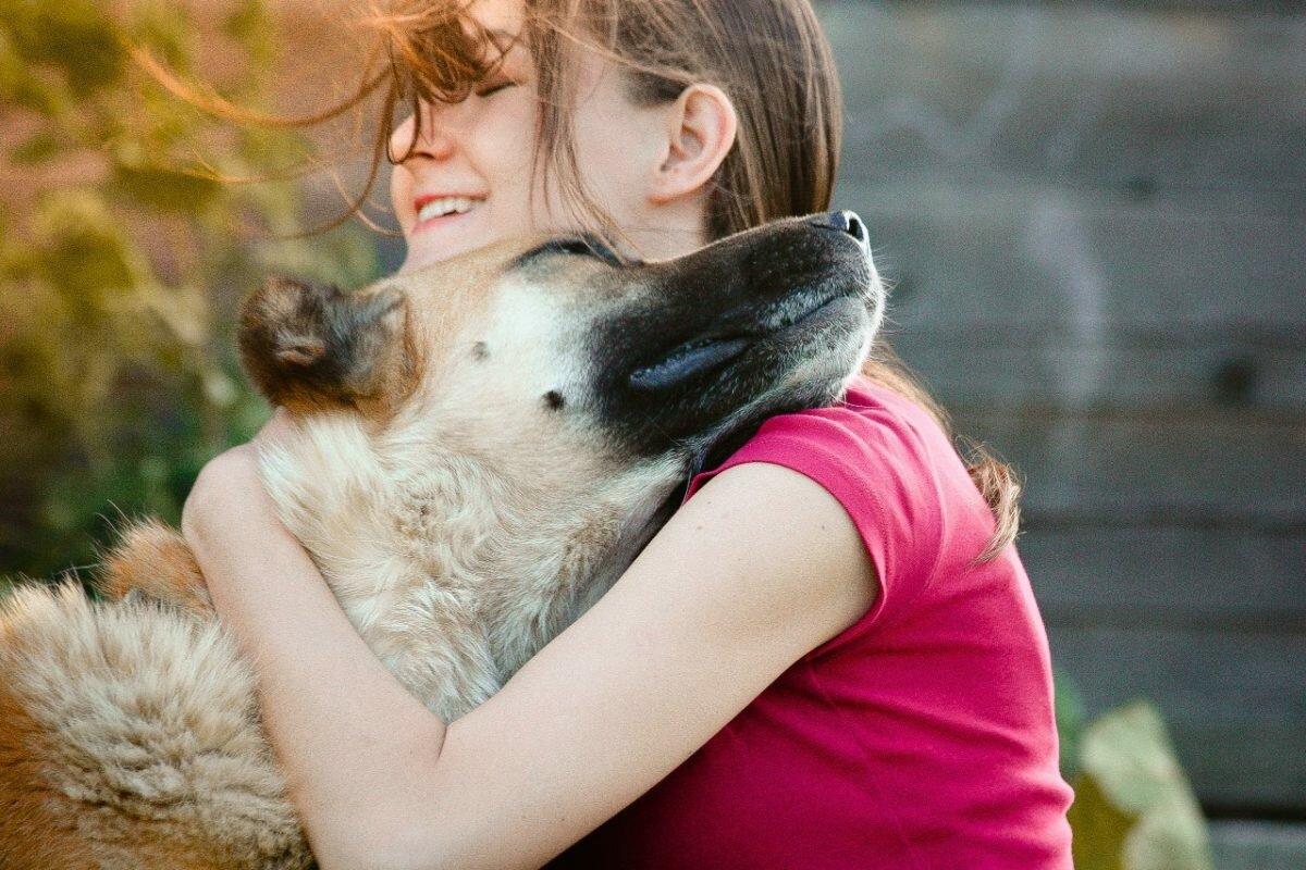 картинки и фото животные с людьми жизни верного
