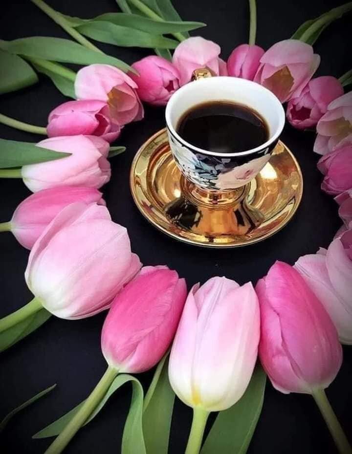 Доброе утро картинки без цветов