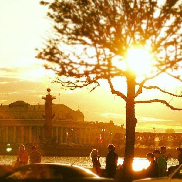 петербуржцы и солнце картинки