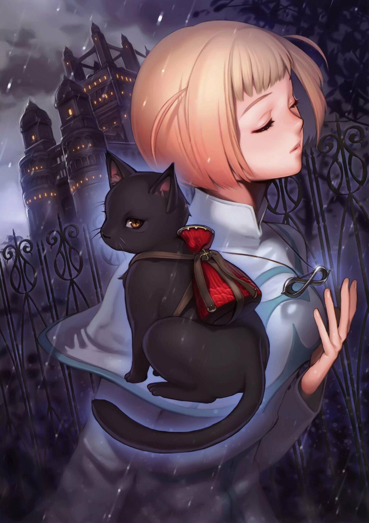 Аниме картинки котиков девушки
