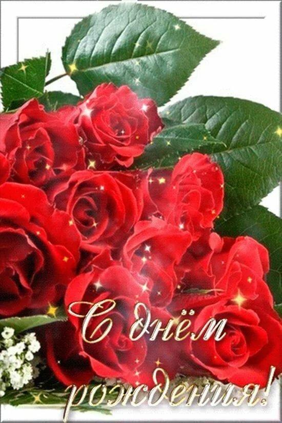 живые картинки роз на день рождения администратор живого
