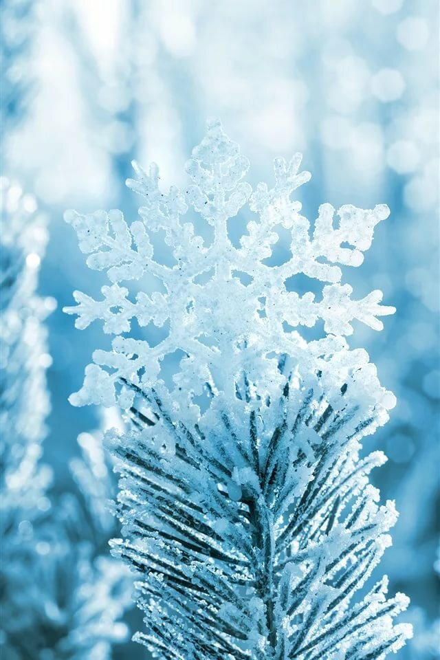Картинки зима на телефон самсунг