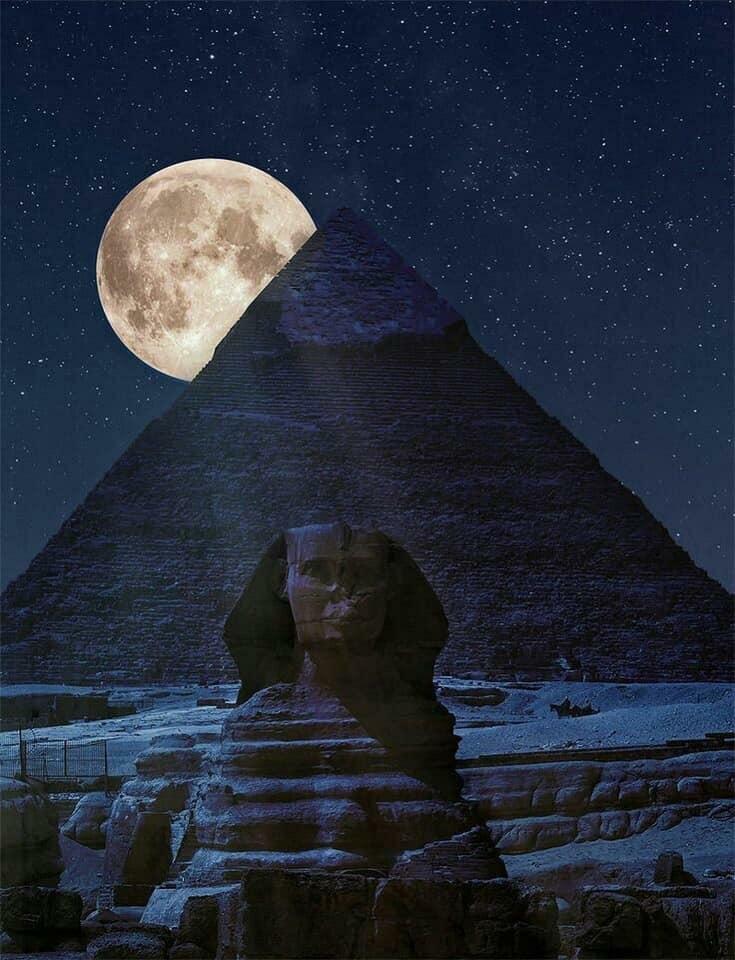 подсолнух, картинки египет ночь минимум, десять новостроек