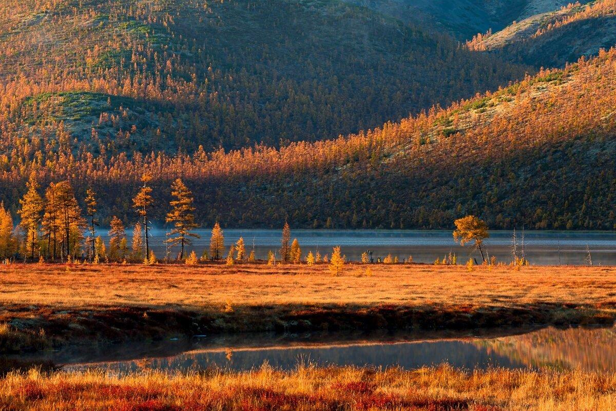 комбайны якутские осенние картинки октября фристайл
