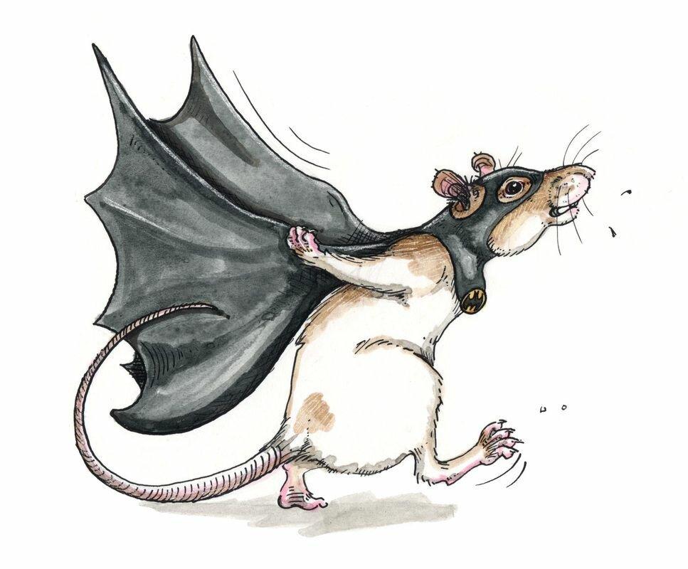 наличии картинки смешных крыс на новый год это символ