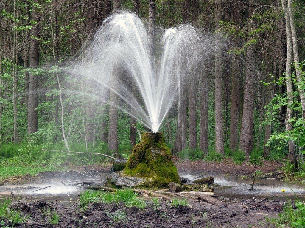 картинки фонтан источник человека встречают