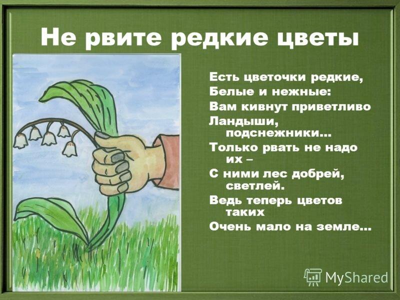 картинки защитить растения чего чего