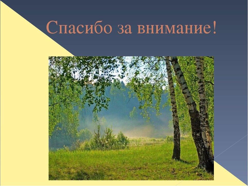 Картинки к стихам есенина о природе