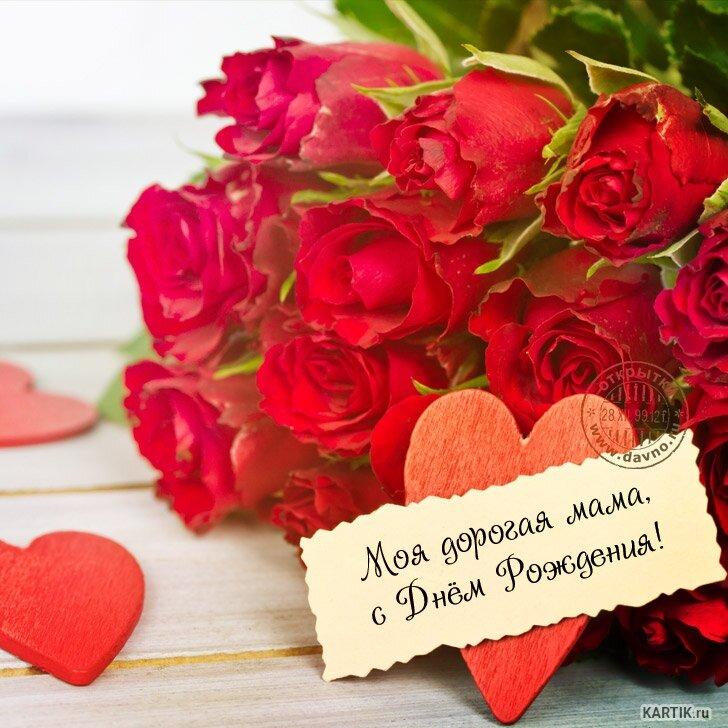 лесных поздравление маме в деревню или китайская роза