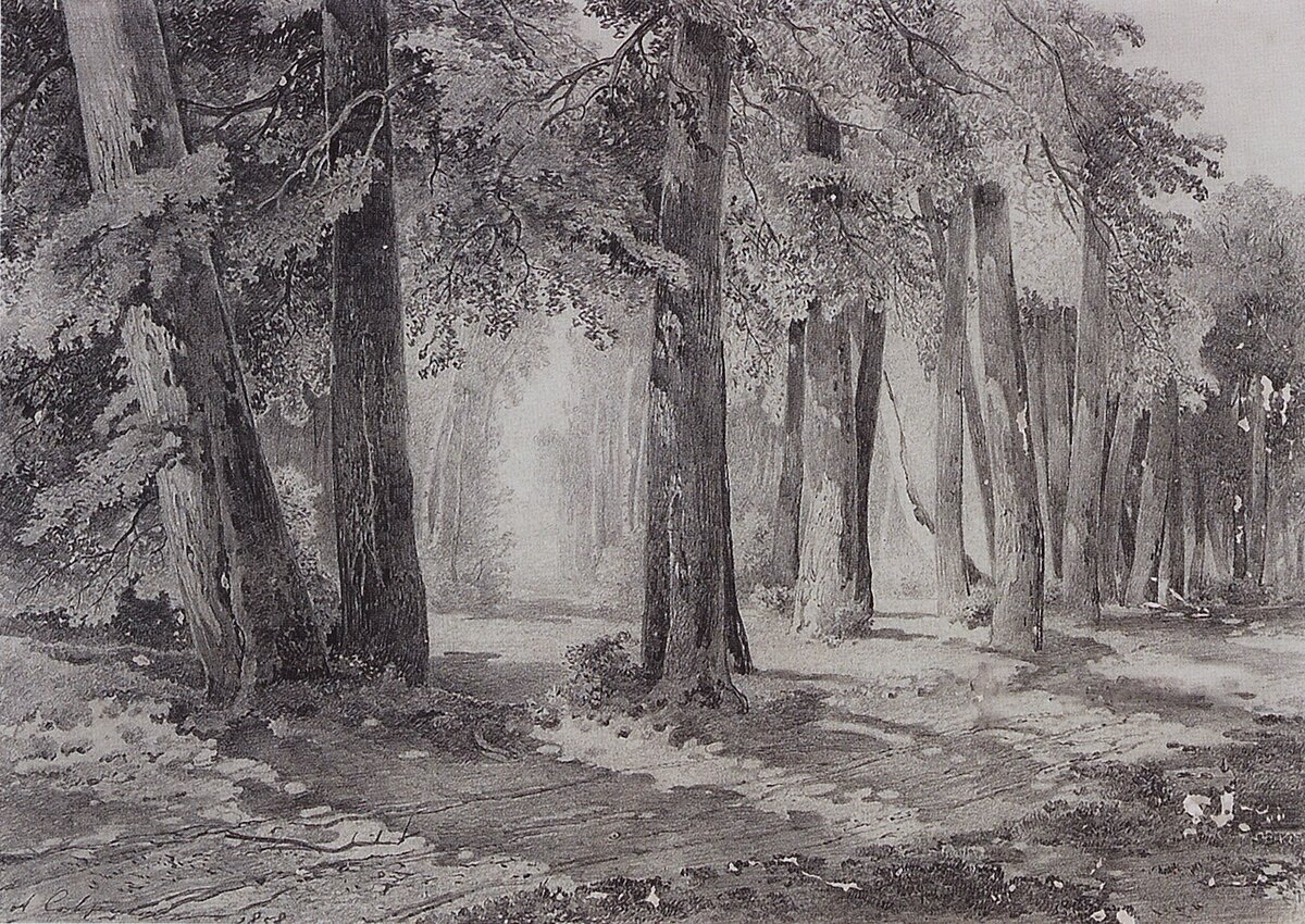 Черно белые канзаши картинки прошлом