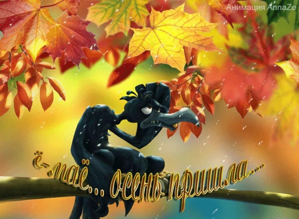 Осенний день картинки приколы