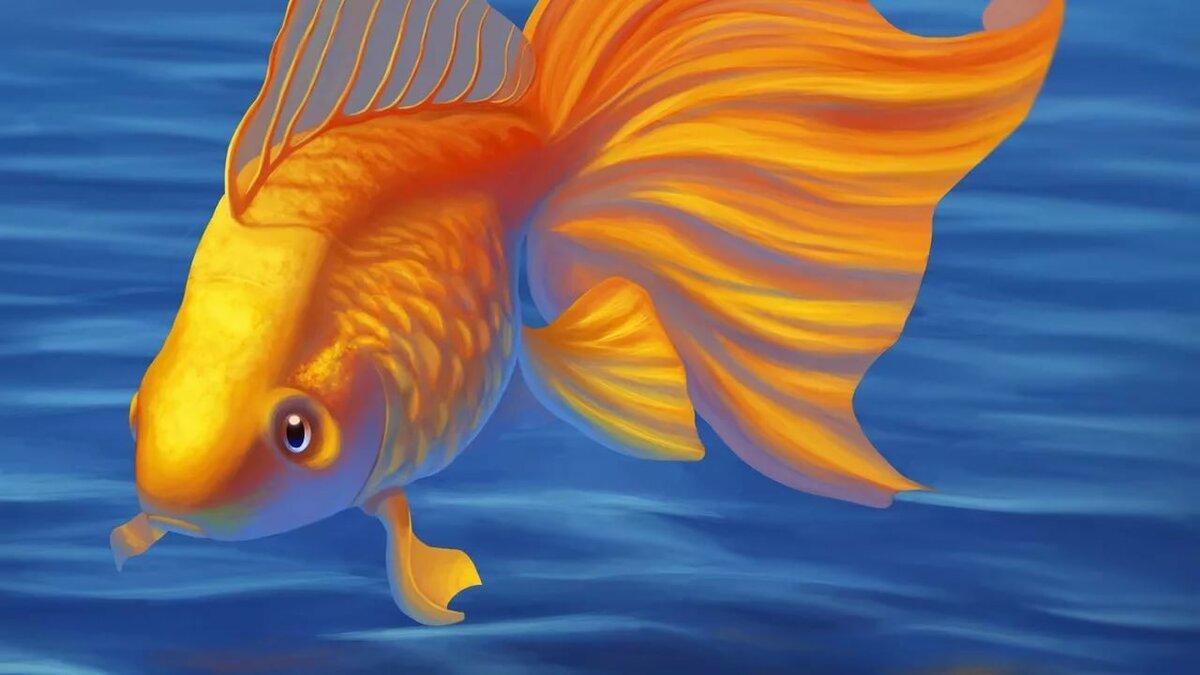 море картинки золотая рыбка на рабочем столе все