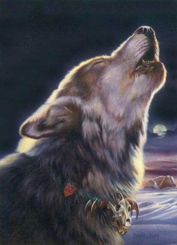 Работа волк картинки