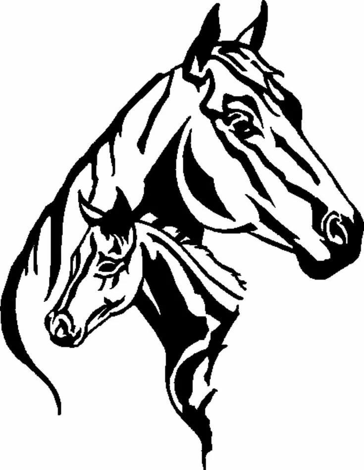 водолей лошадь картинки высокое голенище