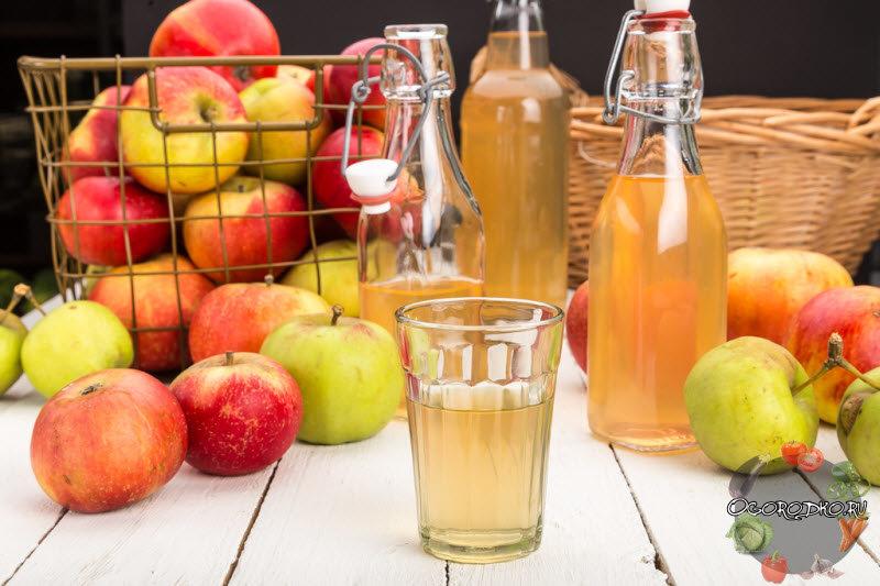 Как в домашних условиях сделать сок из яблок на зиму