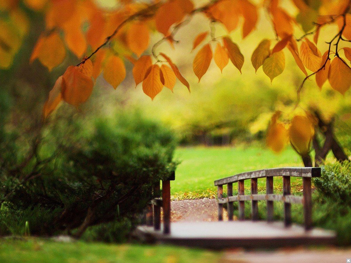 Картинки о конце лета и начале осени, приколами сверхъестественное