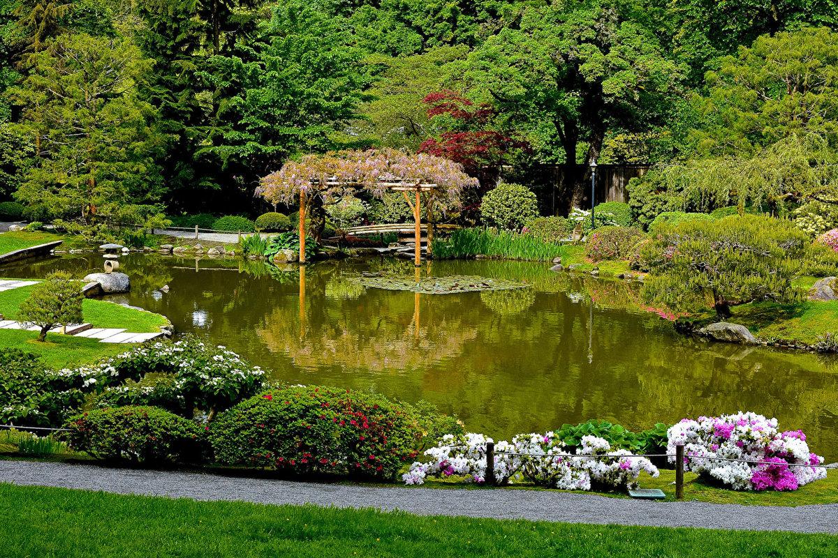 водоем в саду красивые картинки сегодняшнюю статью, узнаете
