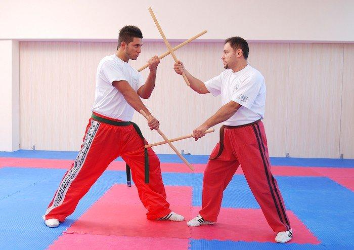 japanese martial arts essay example