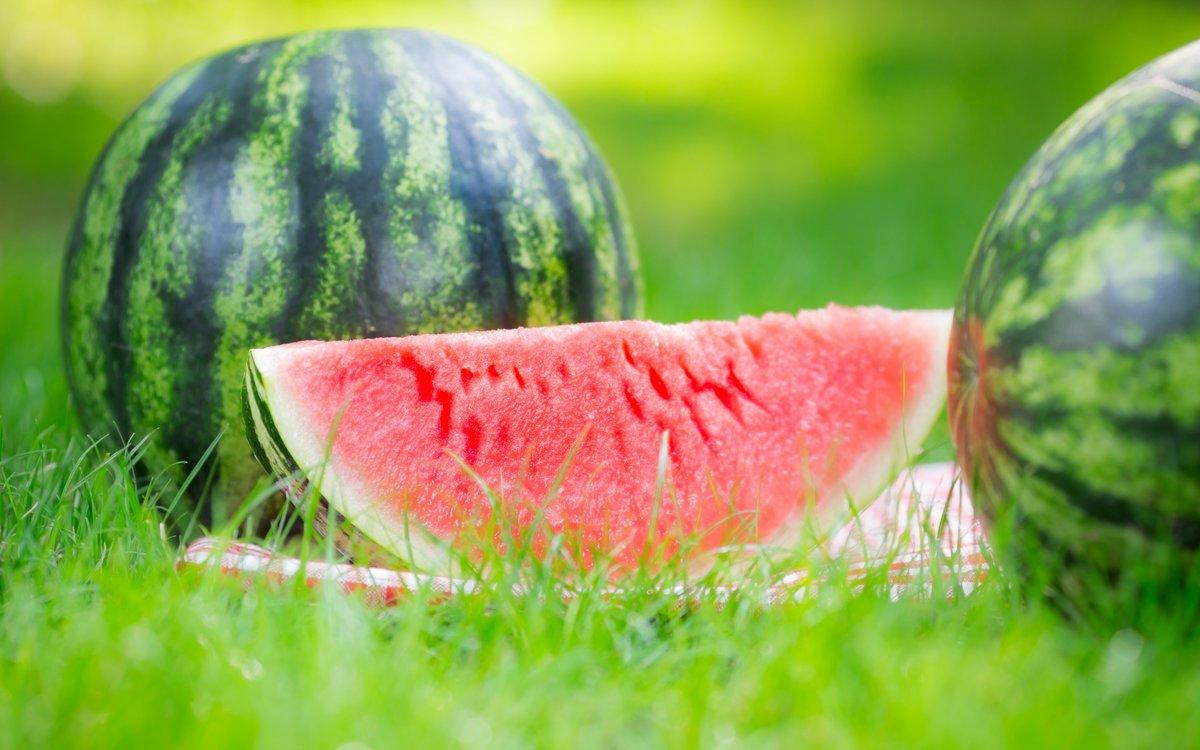Sexfree watermelon, audrey bitoni anal sex gif