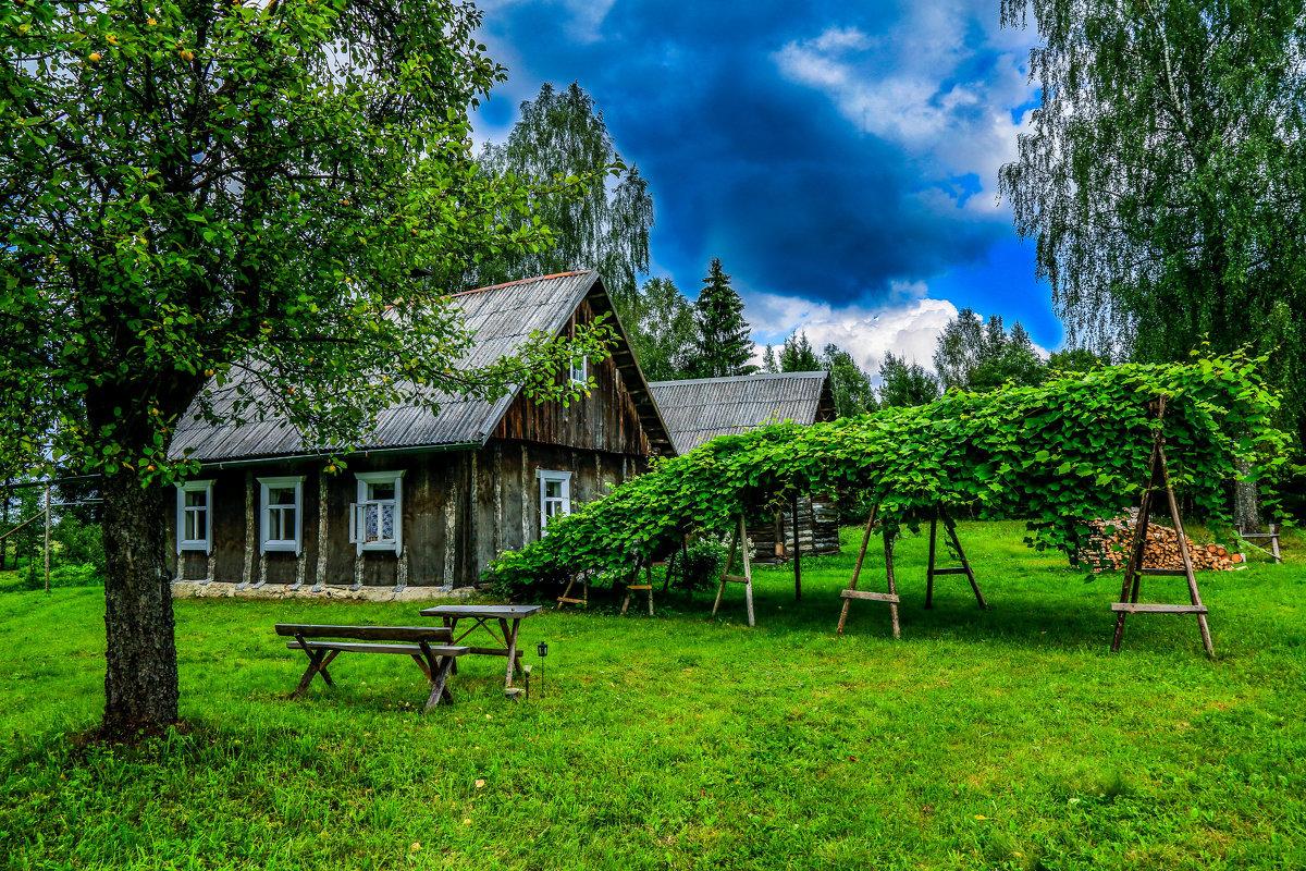 Деревня летние картинки