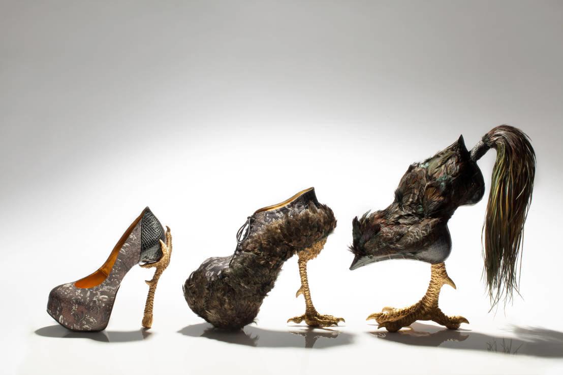 Открытки мужчинами, туфли картинка прикольная