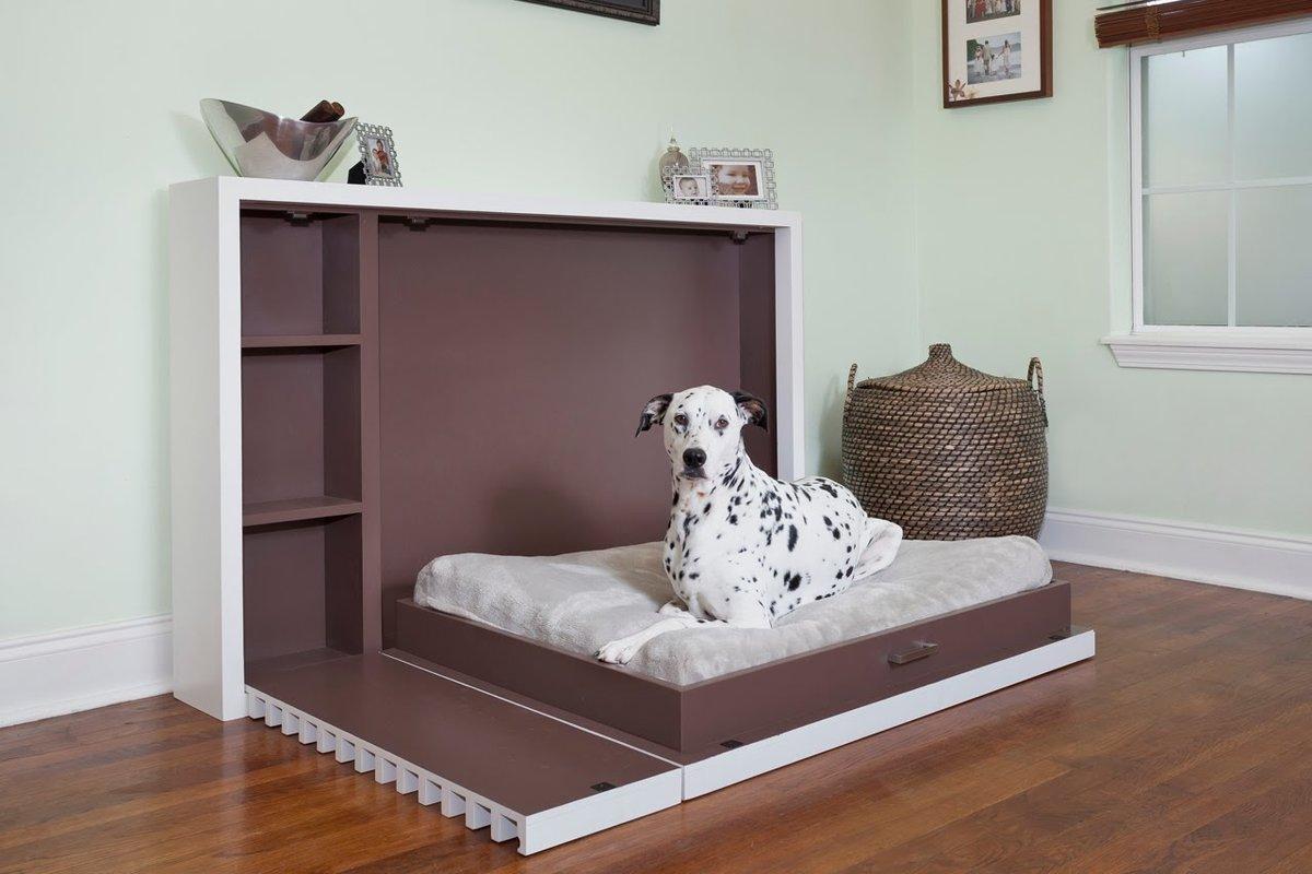 интерьер для любителей  собак прекрасное сочетание