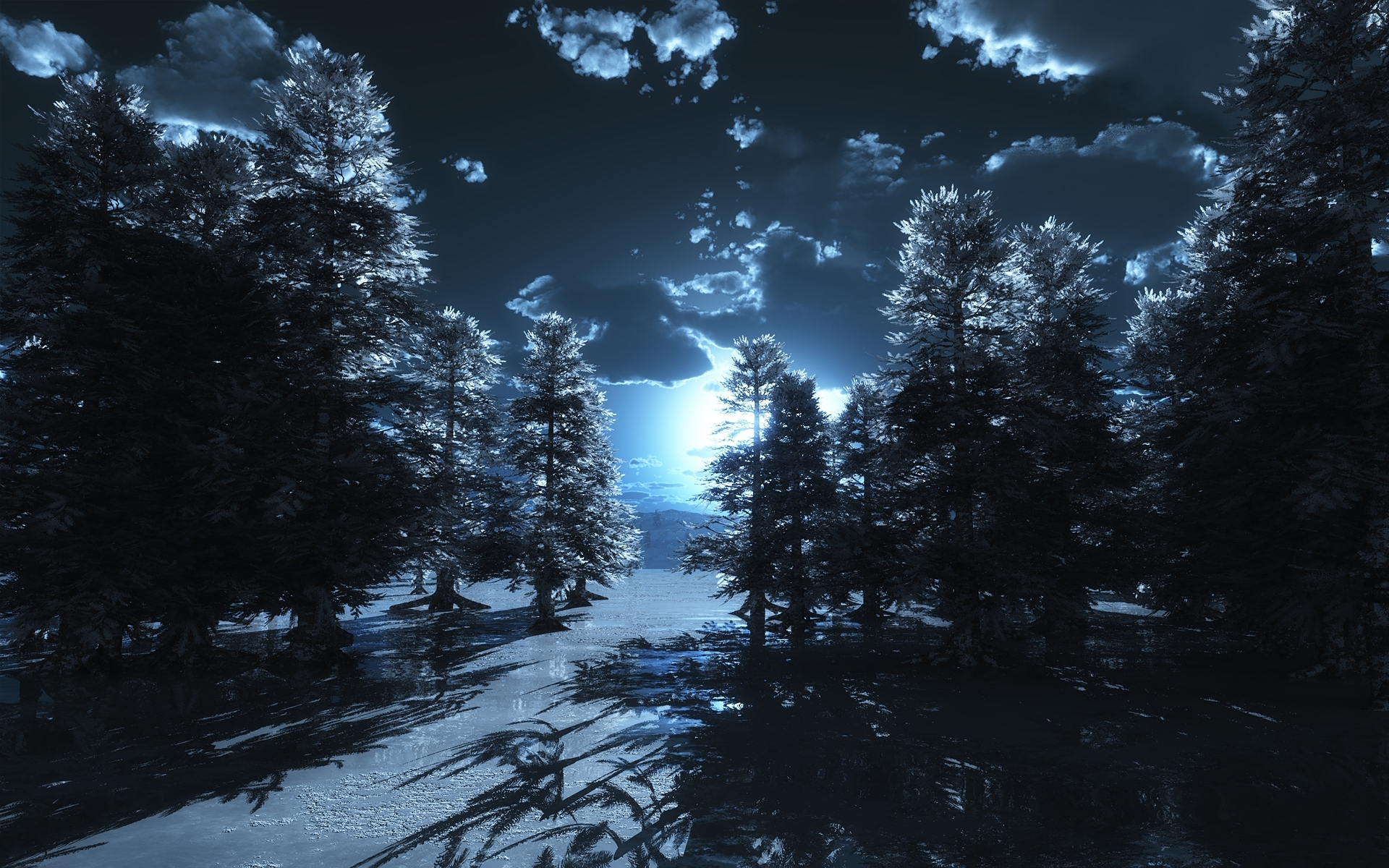 Winter Forest At Night Wallpaper Wide Zabrdast Com Card From