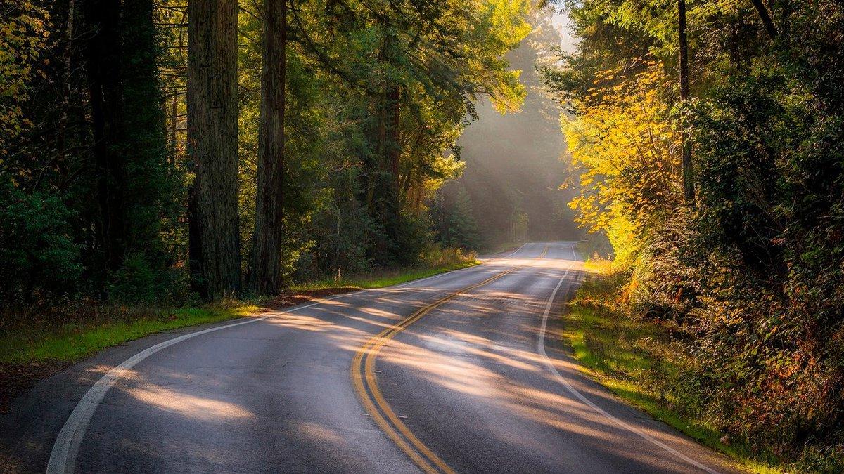 передержать фото дороги уходящей в даль высокого качества продажа