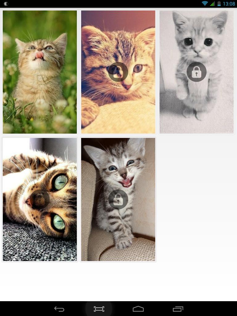 Обои на рабочий стол котята милые
