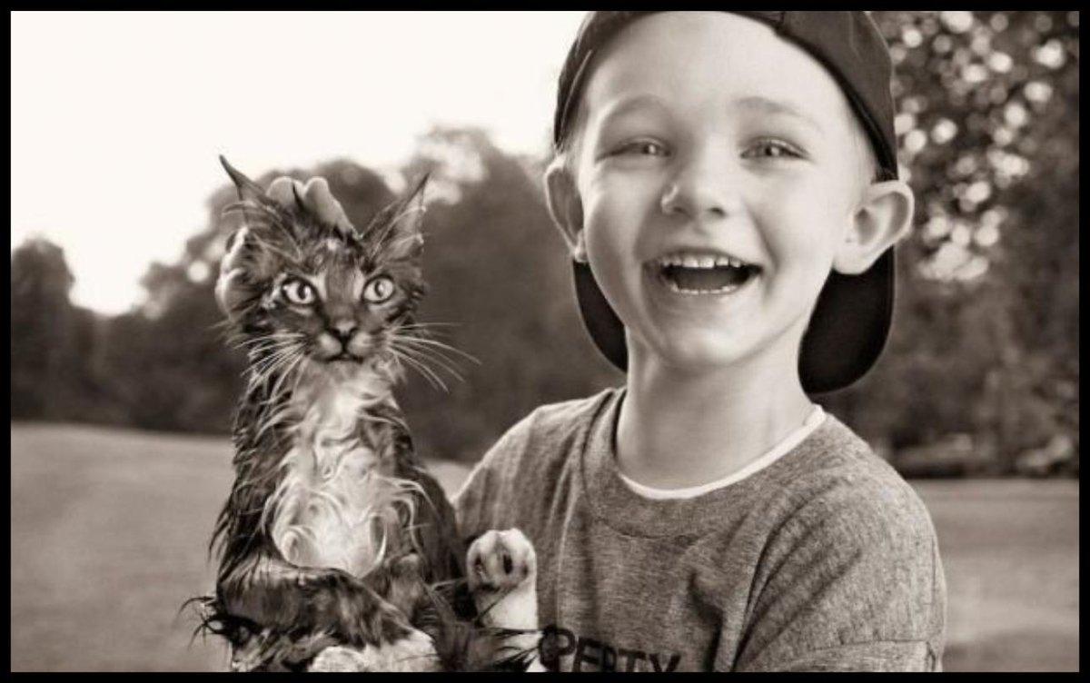 Открытку, смешные картинки о жизни для детей