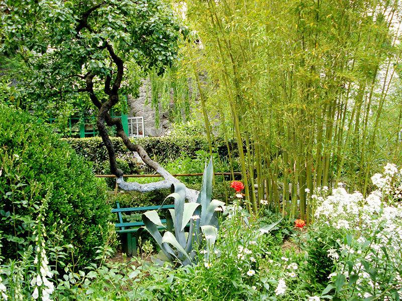 этом чеховский сад фото позже