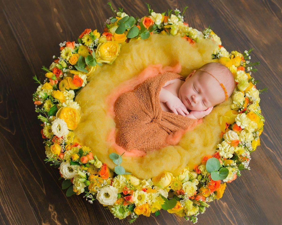 младенец с цветами фото промышленность сегодня вся